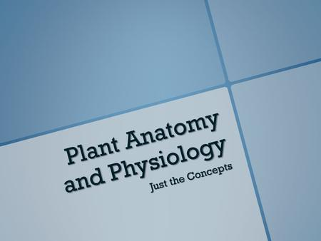 Plant Anatomy and Physiology Just the Concepts. Environmental Factors On Plant Growth.