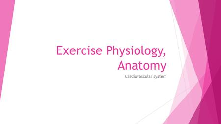 Exercise Physiology, Anatomy Cardiovascular system.