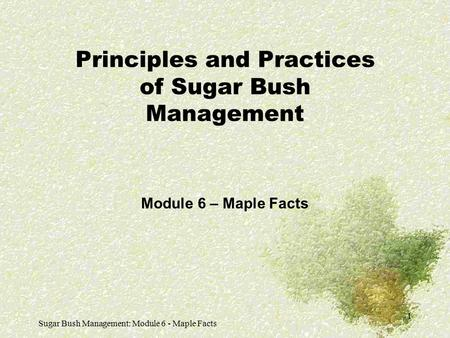 Sugar Bush Management: Module 6 - Maple Facts 1 Principles and Practices of Sugar Bush Management Module 6 – Maple Facts.
