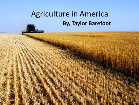 Agriculture in America By, Taylor Barefoot. Thesis Agriculture is a good for the United States, because it provides food and supplies that are used in.