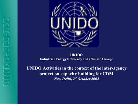 UNIDO Industrial Energy Efficiency and Climate Change UNIDO Activities in the context of the inter-agency project on capacity building for CDM New Delhi,