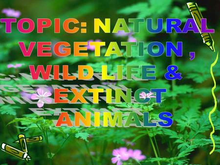 TOPIC: <strong>NATURAL</strong> <strong>VEGETATION</strong> , WILD LIFE & EXTINCT ANIMALS.