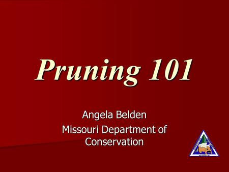 Pruning 101 Angela Belden Missouri Department of Conservation.