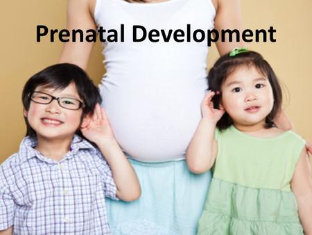Prenatal Development. On-Going Prenatal Care Often there is a direct correlation between the health of the expectant mother and the health of the unborn.
