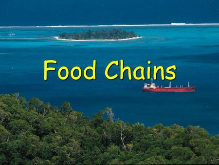 Food Chains. All energy comes from the sun Plants harness the sun's energy in which process?