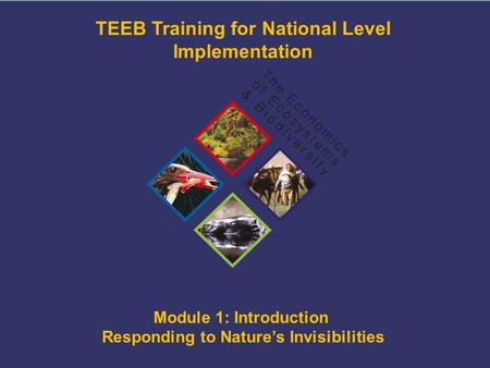 TEEB Training Module 1: Introduction Responding to Nature's Invisibilities TEEB Training for National Level Implementation ©TEEB.