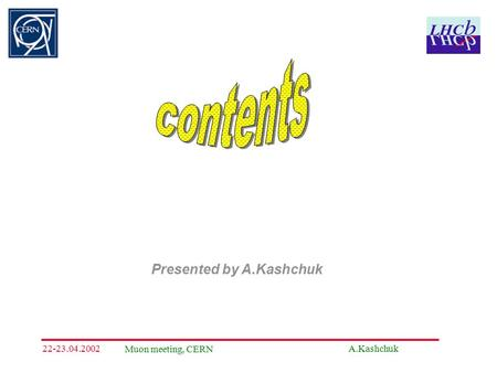 A.Kashchuk Muon meeting, CERN 22-23.04.2002 Presented by A.Kashchuk.
