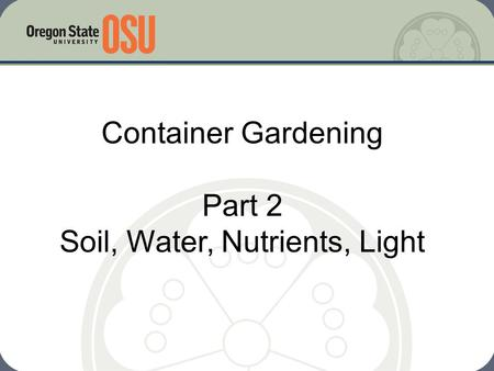 Container Gardening Part 2 Soil, Water, Nutrients, Light.