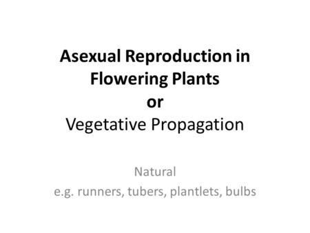Asexual Reproduction in Flowering Plants or Vegetative Propagation Natural e.g. runners, tubers, plantlets, bulbs.