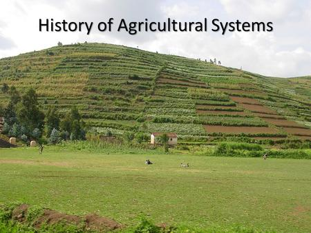 History of Agricultural Systems. Origins of Agriculture Agriculture begins in densely populated areas.