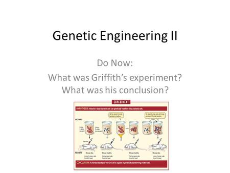 Genetic Engineering II