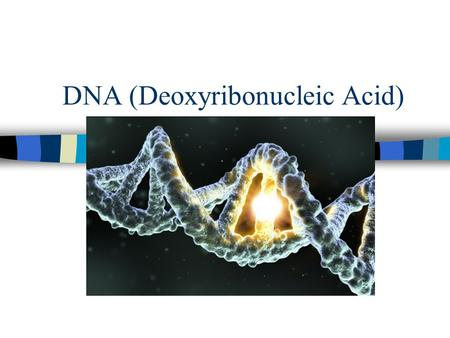 DNA (Deoxyribonucleic Acid). Transformation of Bacteria.