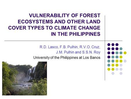 VULNERABILITY OF FOREST ECOSYSTEMS AND OTHER LAND COVER TYPES TO CLIMATE CHANGE IN THE PHILIPPINES R.D. Lasco, F.B. Pulhin, R.V.O. Cruz, J.M. Pulhin and.