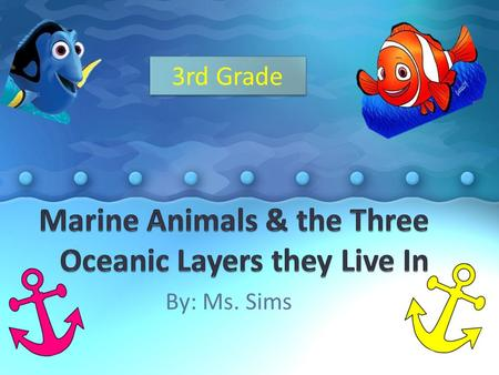 By: Ms. Sims 3rd Grade. In This Lesson, Students will…  Discuss Ocean Life  Draw pictures of different animals that live at the different ocean levels.