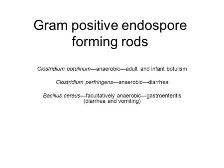 Gram positive endospore forming rods Clostridium botulinum—anaerobic—adult and infant botulism Clostridium perfringens—anaerobic—diarrhea Bacillus cereus—facultatively.