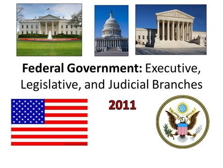 Federal Government: Executive, Legislative, and Judicial Branches