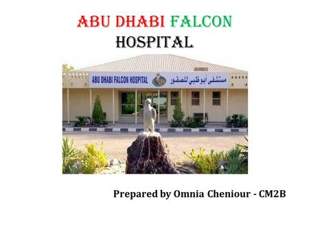 ABU DHABI FALCON HOSPITAL Prepared by Omnia Cheniour - CM2B.