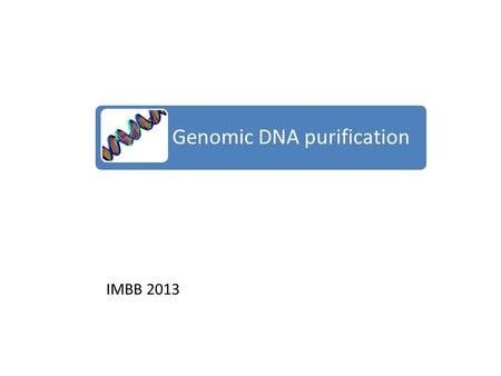 IMBB 2013 Genomic DNA purification. Why purify DNA? The purpose of DNA purification from the cell/tissue is to ensure it performs well in subsequent downstream.