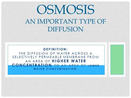 Osmosis An Important Type of Diffusion