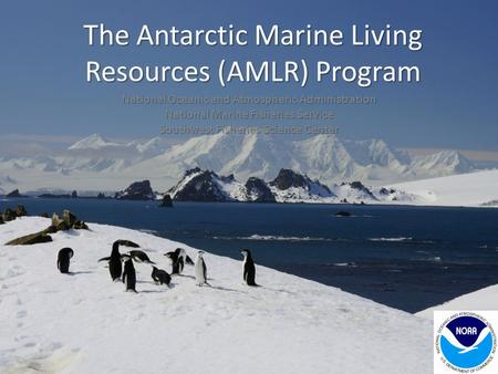 The Antarctic Marine Living Resources (AMLR) Program National Oceanic and Atmospheric Administration National Marine Fisheries Service Southwest Fisheries.