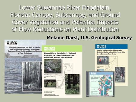 Lower Suwannee River Floodplain, Florida: Canopy, Subcanopy, and Ground Cover Vegetation and Potential Impacts of Flow Reductions on Plant Distribution.
