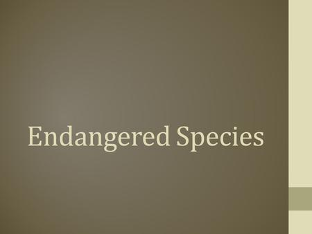 Endangered Species. The Endangered Species Act (ESA) Law passed in 1973 by Richard Nixon on December 28th The Act is administered by two federal agencies.