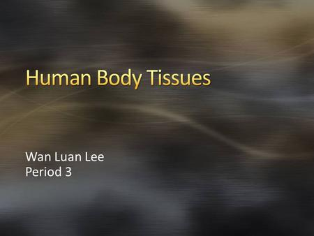 Wan Luan Lee Period 3. Epithelial tissue Connective tissue Nervous tissue Muscle tissue.
