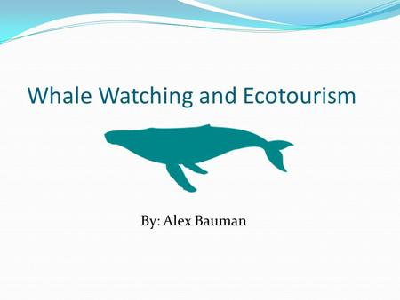 Whale Watching and Ecotourism By: Alex Bauman. What they are. Just like any other observation of animals such as bird watching, whale watching is watching.