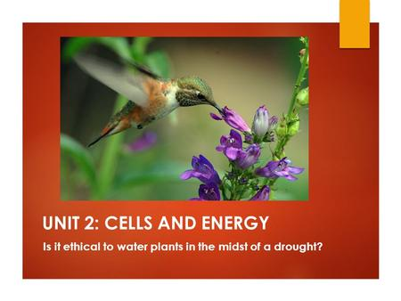 UNIT 2: CELLS AND ENERGY Is it ethical to water plants in the midst of a drought?