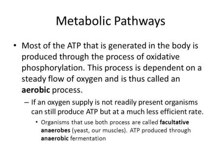 Metabolic Pathways Most of the ATP that is generated in the body is produced through the process of oxidative phosphorylation. This process is dependent.