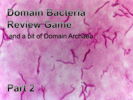 And a bit of Domain Archaea. BACT-OFFYO -SOCCUSSTOMACH PAINS THAT'S JUST GROSS -BONUS- SMELLY PANTS 161116*21 271217*22 381318*23 491419*24 5101520*25.