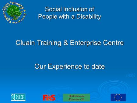 Health Service Executive - SE Social Inclusion of People with a Disability Cluain Training & Enterprise Centre Our Experience to date.