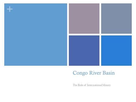 + Congo River Basin The Role of International Money.