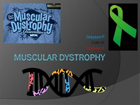 Greyson P. Cole W. Corinne H.. Muscular Dystrophy  The muscular dystrophies (MD) are a group of more than 30 genetic diseases characterized by progressive.