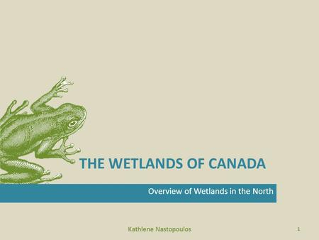 THE WETLANDS OF CANADA Overview of Wetlands in the North Kathlene Nastopoulos 1.