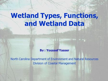 January 2002. Wetlands Wetlands Wetland Functions Wetland Functions Wetland Types Wetland Types wetland data wetland data Topics.