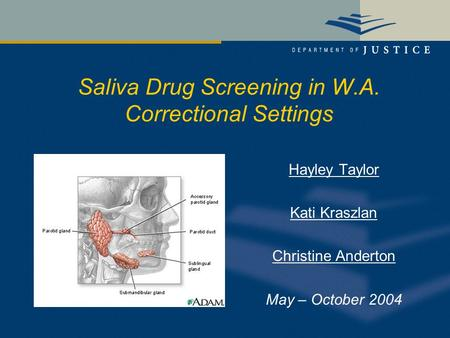 Saliva Drug Screening in W.A. Correctional Settings Hayley Taylor Kati Kraszlan Christine Anderton May – October 2004.