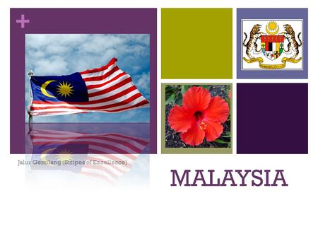 + MALAYSIA Jalur Gemilang (Stripes of Excellence).