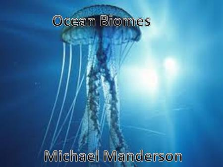 - Ocean is the largest ecosystem in the world covering over 75 percent of the planet. -This biomes is said to contain the most rich and diverts types.