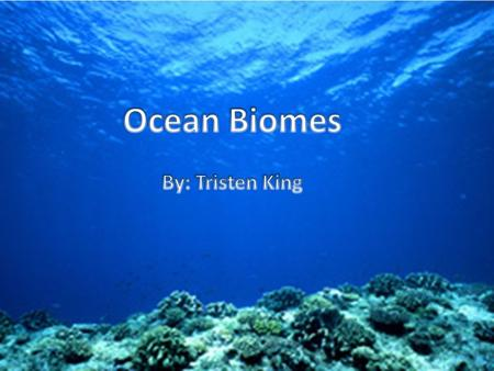 The Ocean biome is the worlds largest biome. Life in the ocean is very diverse. The smallest ocean creature is so tiny that it can only be seen under.