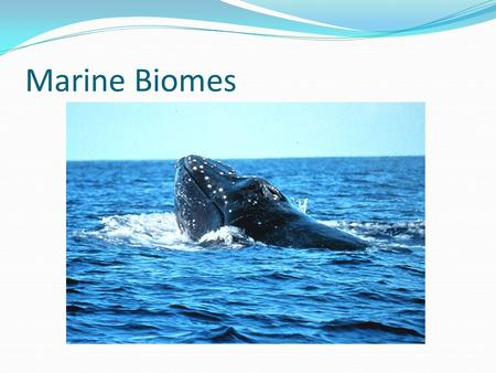 Marine Biomes. Biome A biome is a major, geographically extensive ecosystem, structurally characterized by its dominant life forms Most of the oceans.