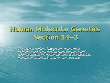 Human Molecular Genetics Section 14–3 This section explains how genetic engineering techniques are being used to study the genes and chromosomes in the.