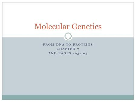 FROM DNA TO PROTEINS CHAPTER 7 AND PAGES 103-105 Molecular Genetics.