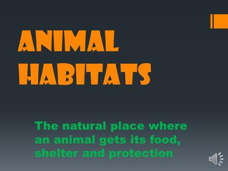 ANIMAL HABITATS The natural place where an animal gets its food, shelter and protection.