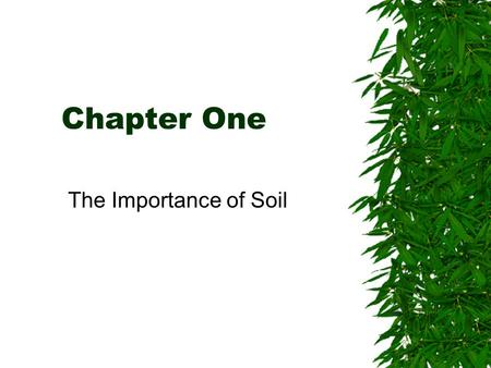 Understanding the importance of soil ppt download for Importance of soil minerals