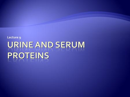 Lecture 9.  Presence of excess of serum proteins in the urine is called proteinuria.  The excess of protein leads to foamy or frothy urine  Up to 150.