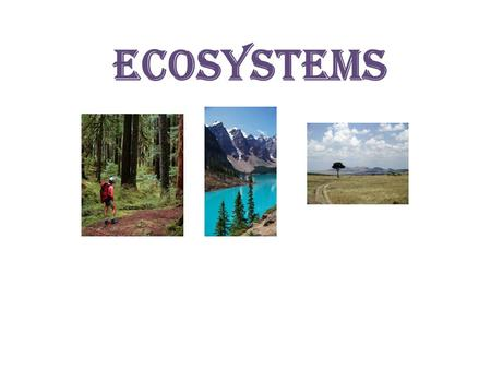 <strong>Ecosystems</strong>.