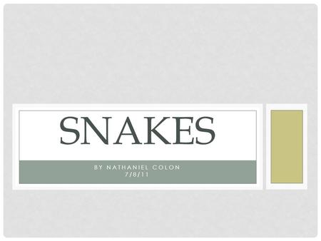 BY NATHANIEL COLON 7/8/11 SNAKES. THINGS THAT I WILL BE INCLUDING IN THIS SLIDE SHOW. INFORMATION ON 5 DIFFERENT TYPES OF SNAKES: THE EASTERN DIAMONDBACK.