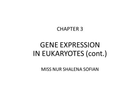 CHAPTER 3 GENE EXPRESSION IN EUKARYOTES (cont.) MISS NUR SHALENA SOFIAN.