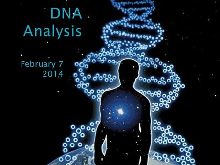 DNA Analysis February 7 2014.